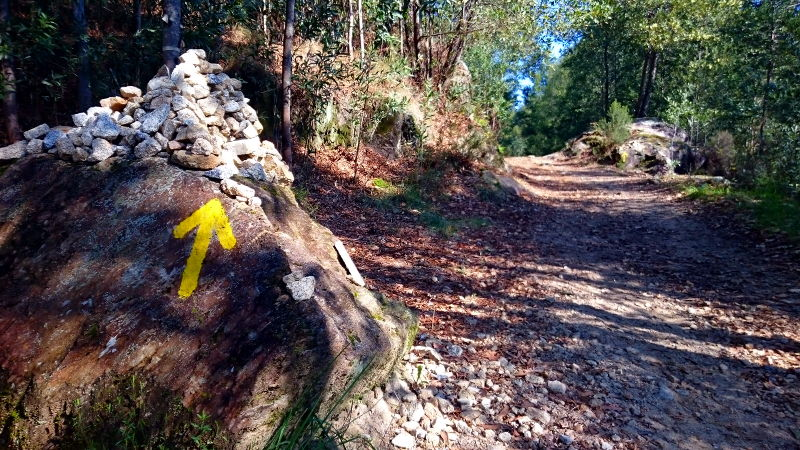 Der gelbe Pfeil zeigt dir den Weg!