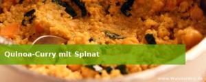 Quinoa-Curry mit Spinat