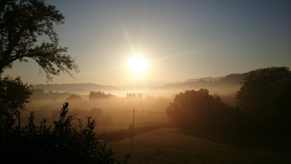 WanderVeg Woche 11 Jakobsweg-Tagebuch