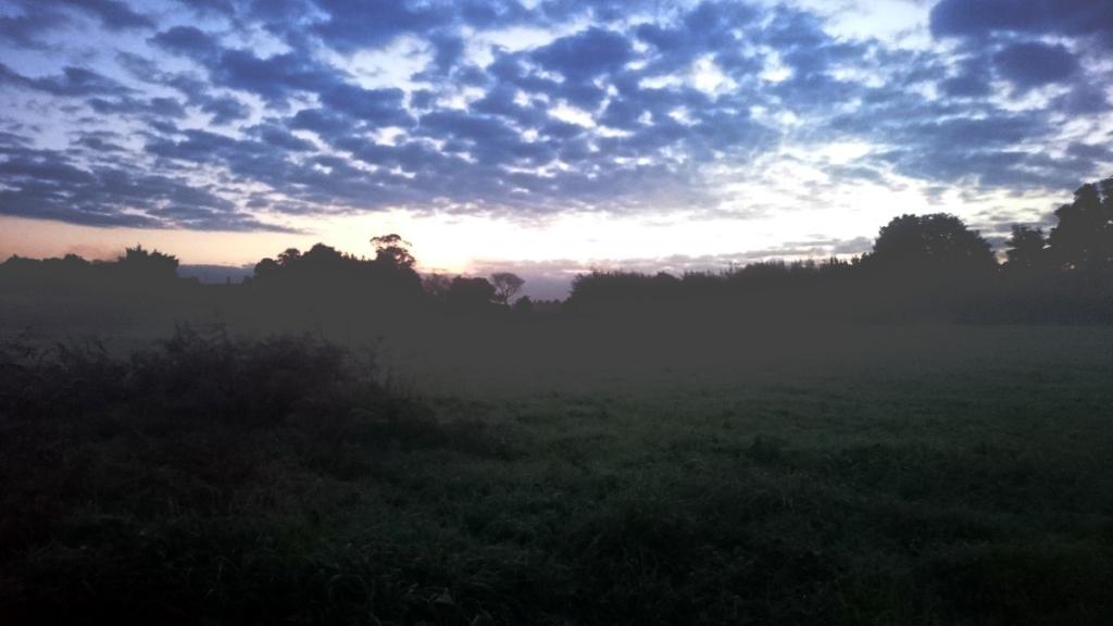 Jakobsweg-Tagebuch Woche 12 Wanderveg Nebel Sonne Camino del Norte